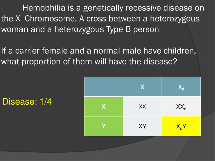 Hemophilia is a genetically recessive disease on the X- Chromosome. A cross between a heterozygous woman and a heterozygous Type B person