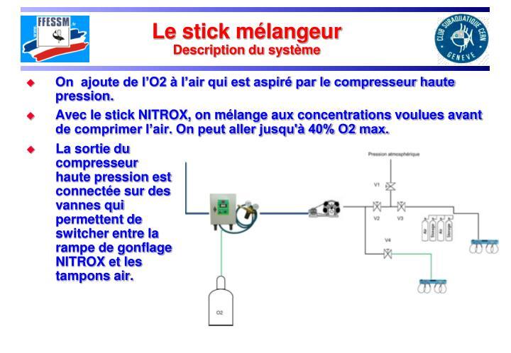 Le stick mélangeur
