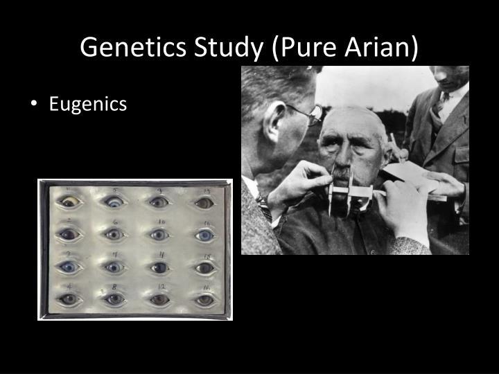 Genetics Study (Pure Arian)