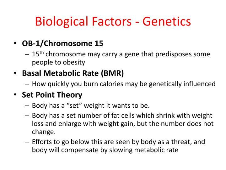 Biological Factors - Genetics