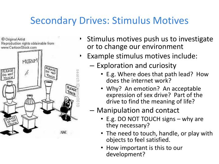Secondary Drives: Stimulus Motives