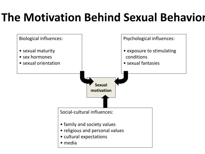 The Motivation Behind Sexual Behavior