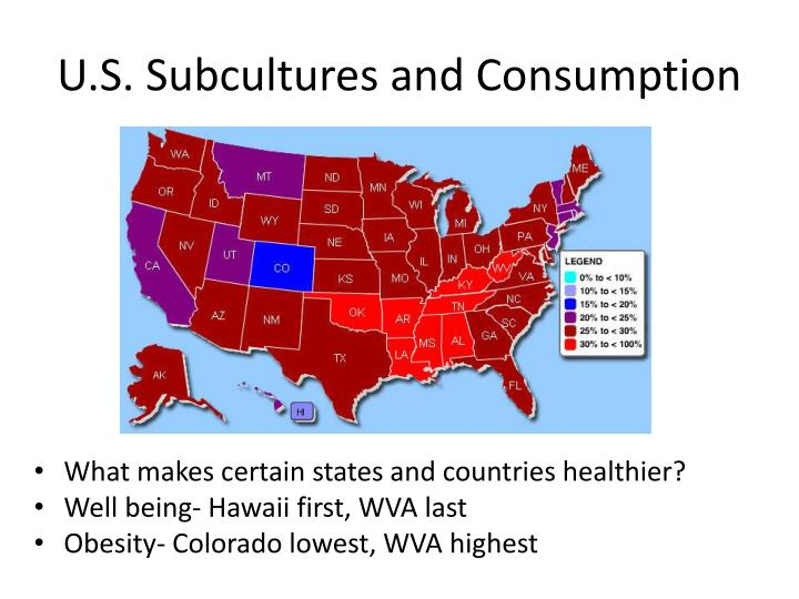 U.S. Subcultures and Consumption