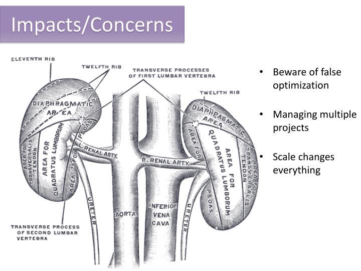 Impacts/Concerns