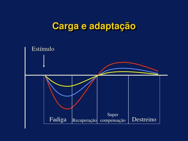 Carga e adaptação