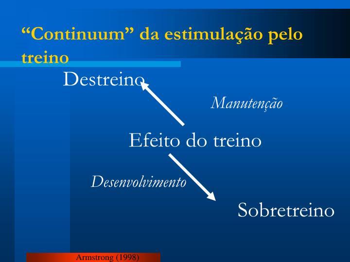 """""""Continuum"""" da estimulação pelo treino"""
