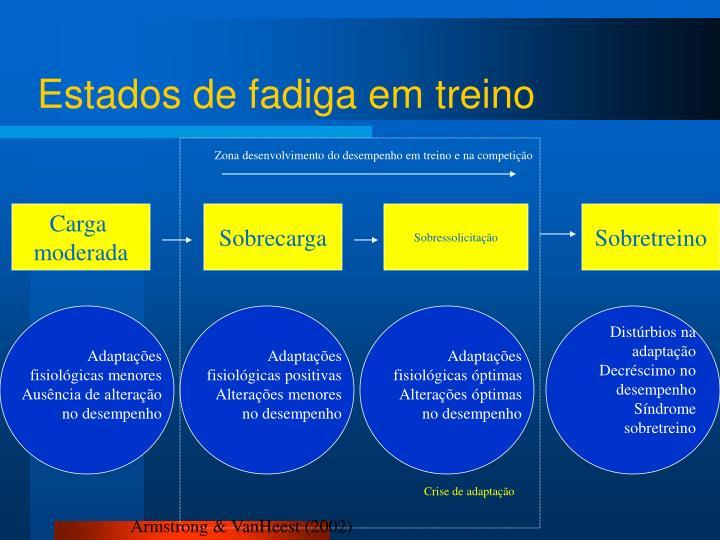 Zona desenvolvimento do desempenho em treino e na competição
