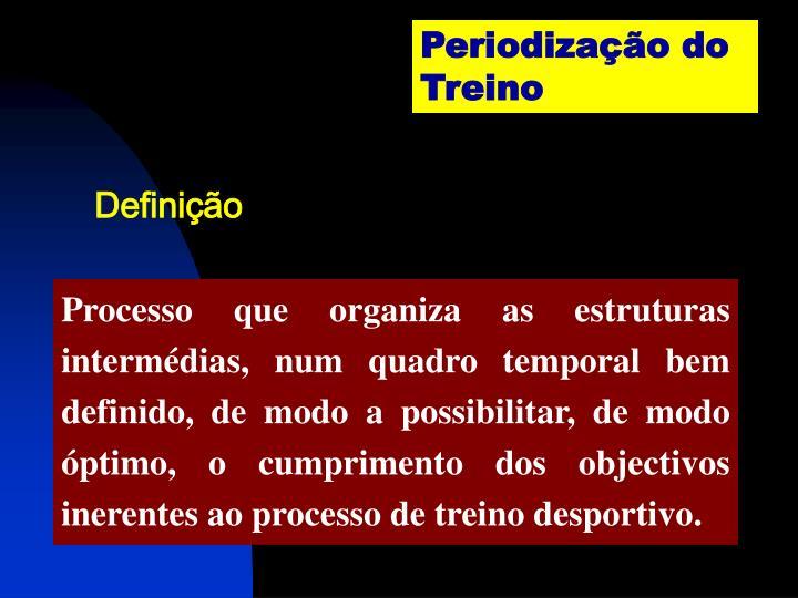 Periodização do Treino
