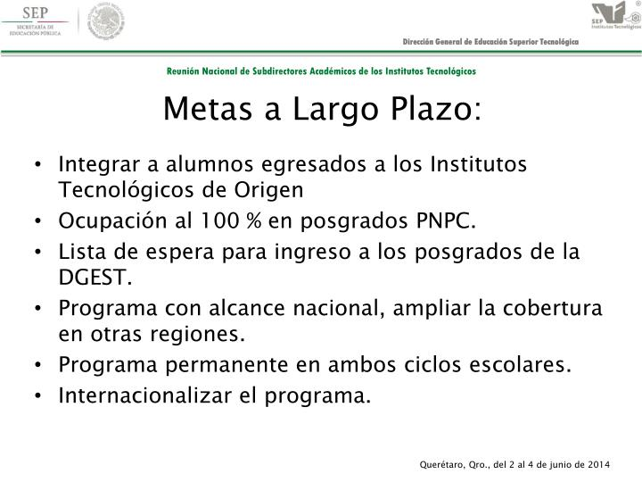 Metas a Largo Plazo: