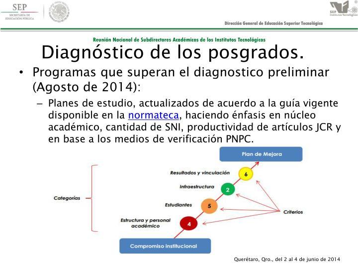 Diagnóstico de los posgrados.