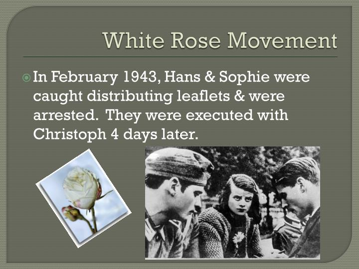 White Rose Movement