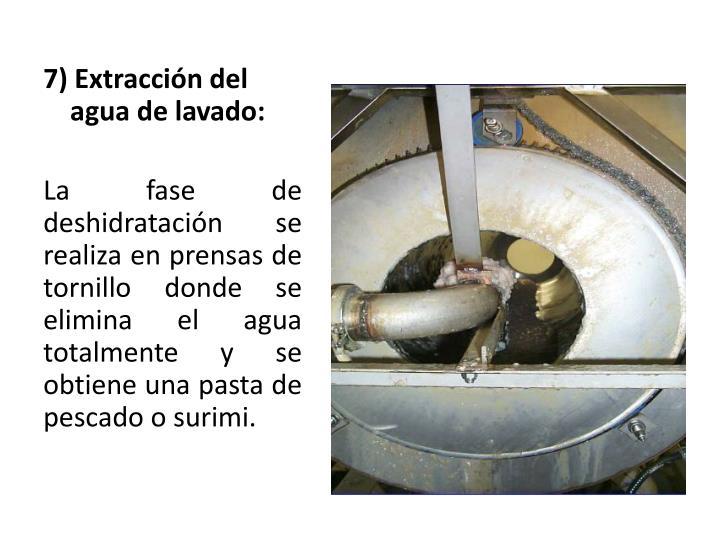 7) Extracción