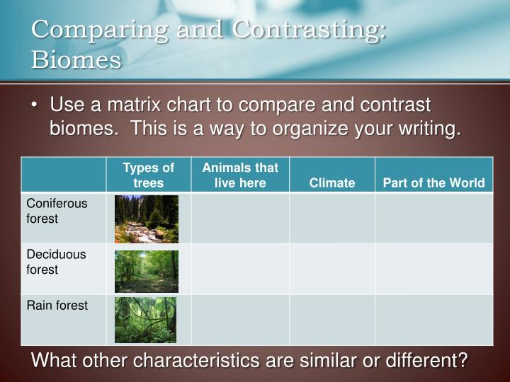Comparing and Contrasting: