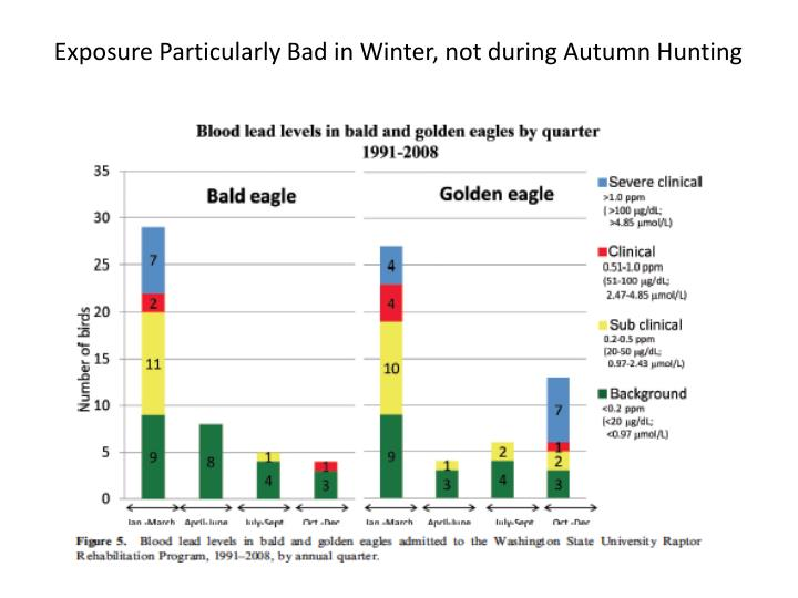 Exposure Particularly Bad in Winter, not during Autumn Hunting