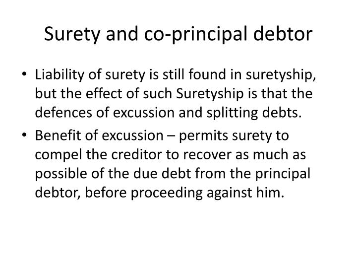 Surety and co-principal debtor
