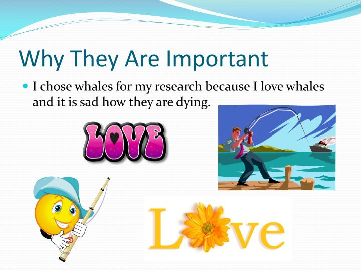 Why They Are Important
