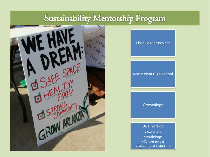 Sustainability Mentorship Program