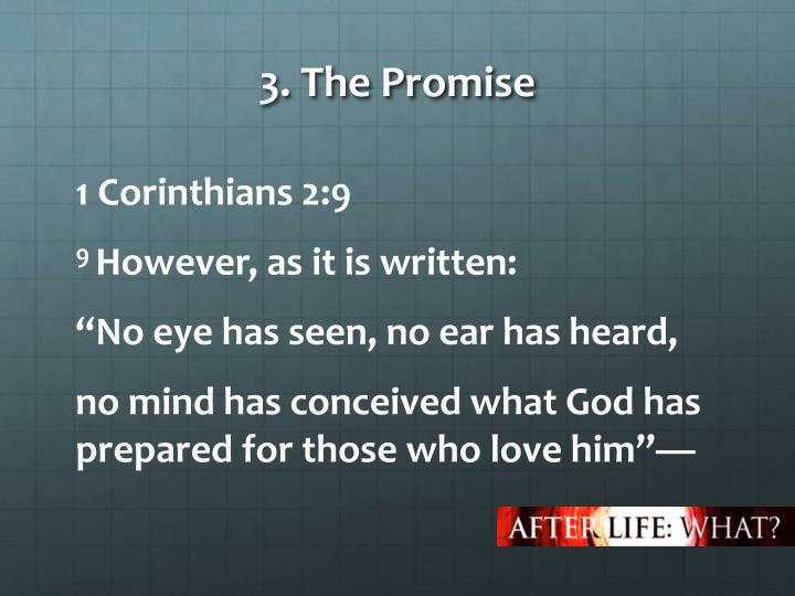 3. The Promise