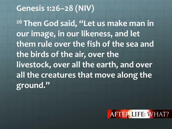 Genesis 1:26–28 (NIV)