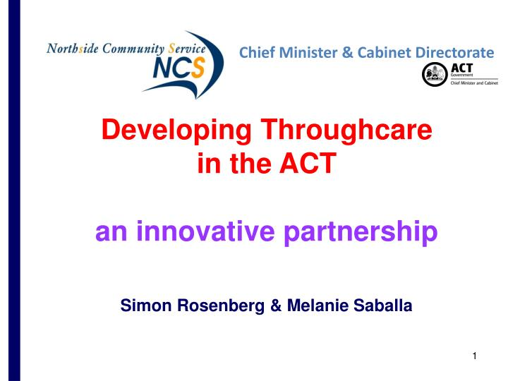 Developing Throughcare