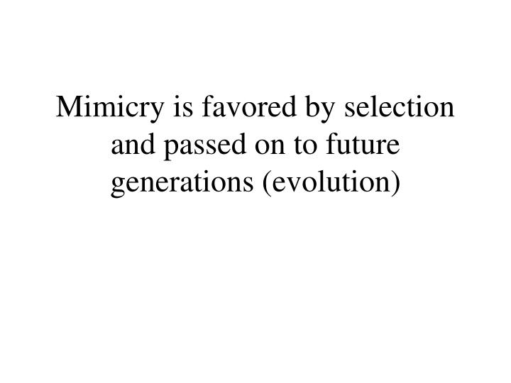 Mimicry is favored by selection and passed on to future generations (evolution)