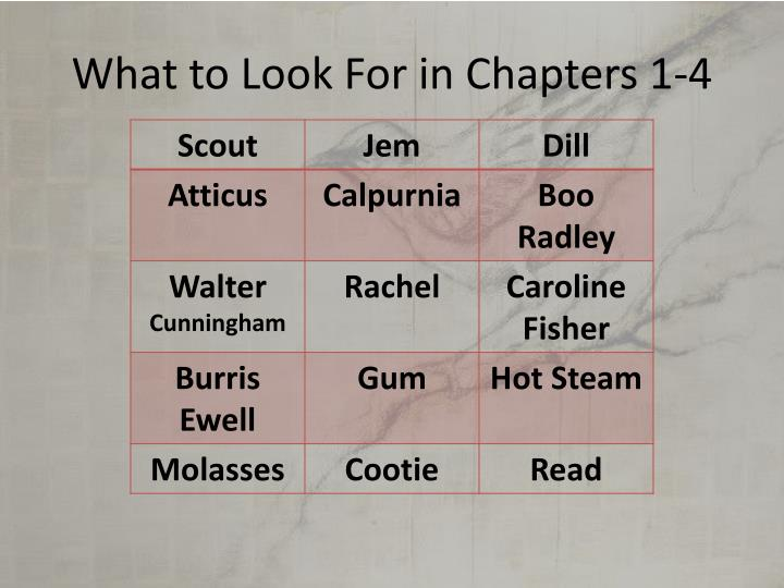 What to Look For in Chapters 1-4