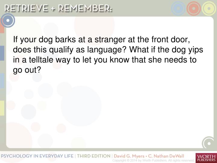 If your dog barks at a stranger at the