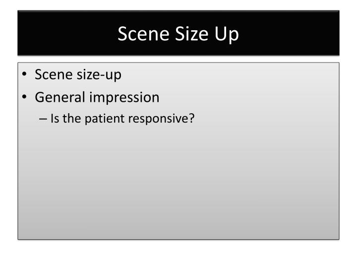 Scene Size Up