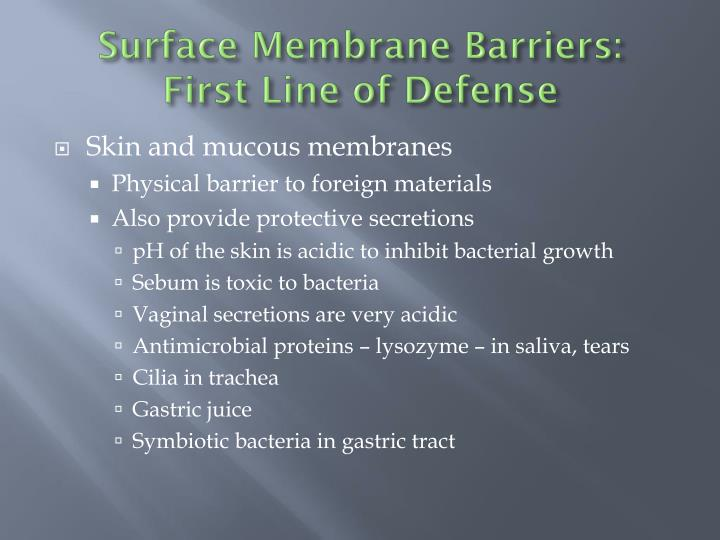 Surface Membrane Barriers: