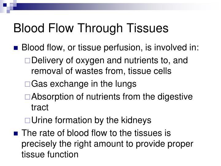Blood Flow Through Tissues