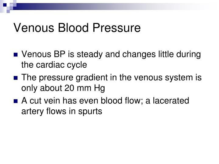Venous Blood Pressure