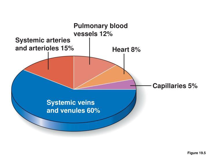 Pulmonary blood