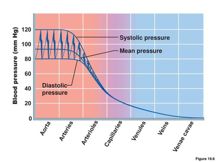 Systolic pressure