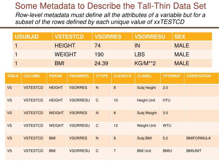 Some Metadata to Describe the Tall-Thin Data Set