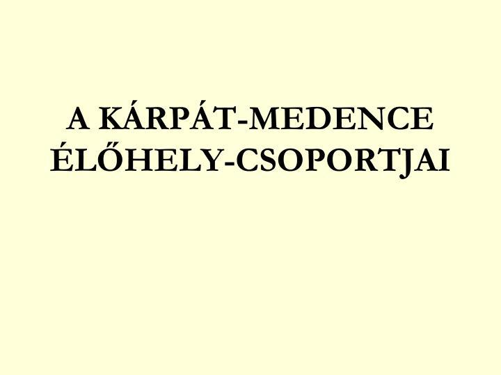 A KÁRPÁT-MEDENCE