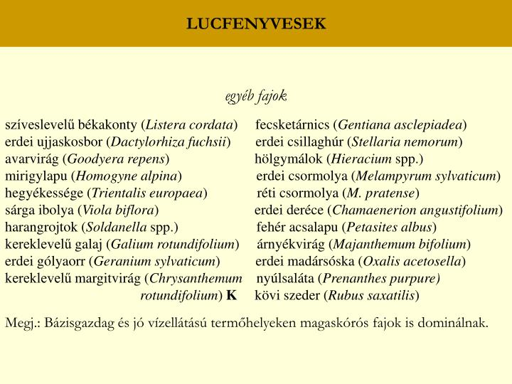 LUCFENYVESEK