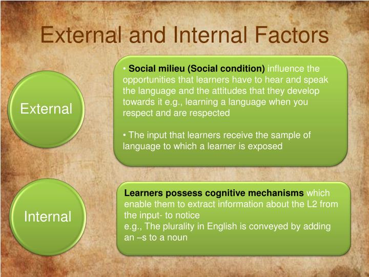 External and Internal Factors