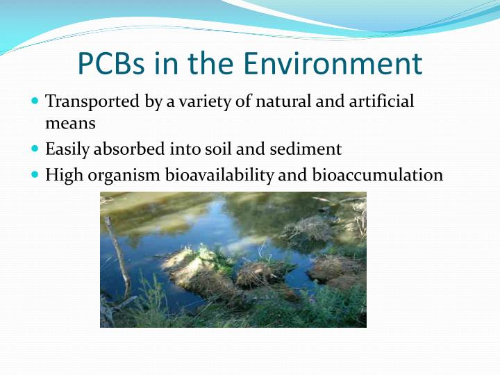 PCBs in the Environment