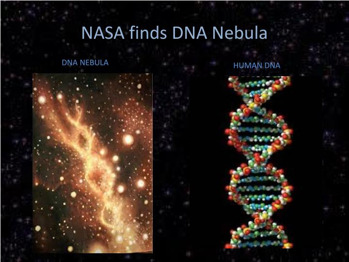 NASA finds DNA Nebula