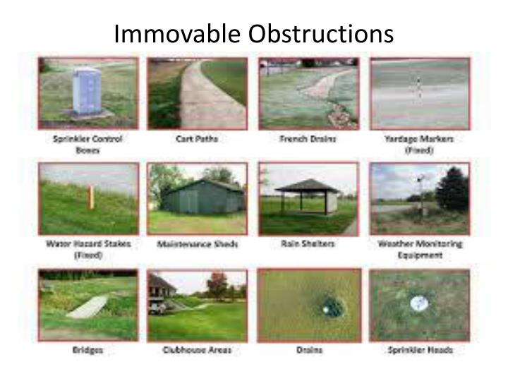 Immovable Obstructions