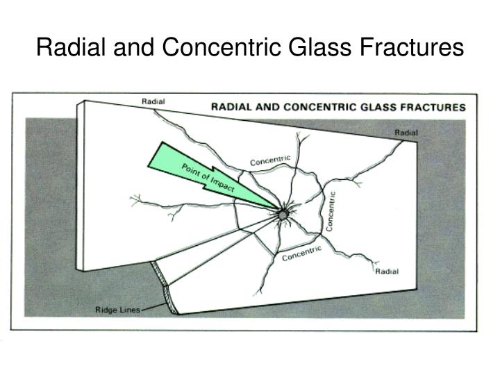 Radial and Concentric Glass Fractures