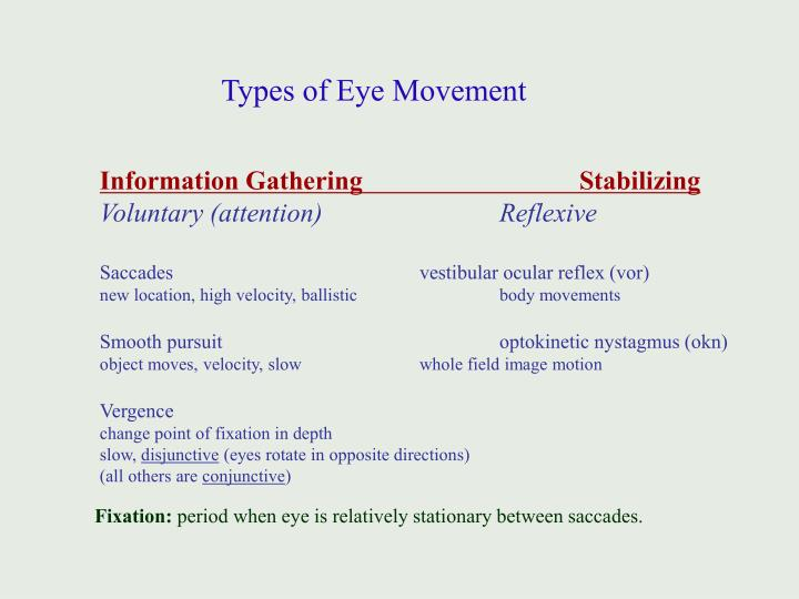 Types of Eye Movement