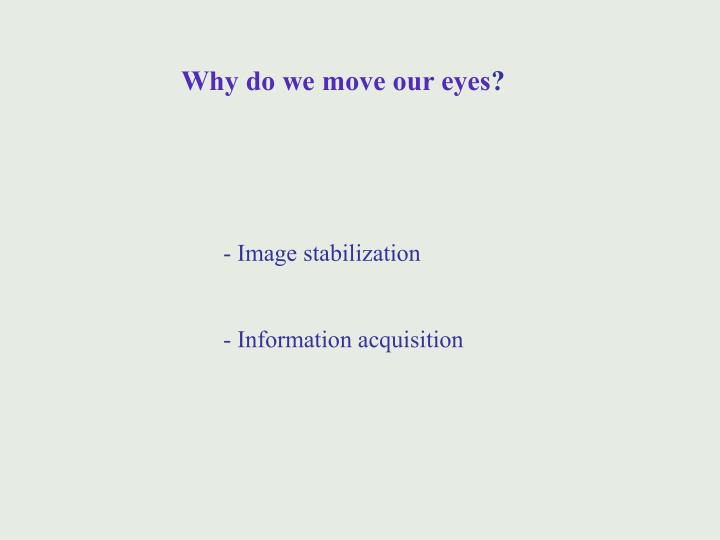 Why do we move our eyes