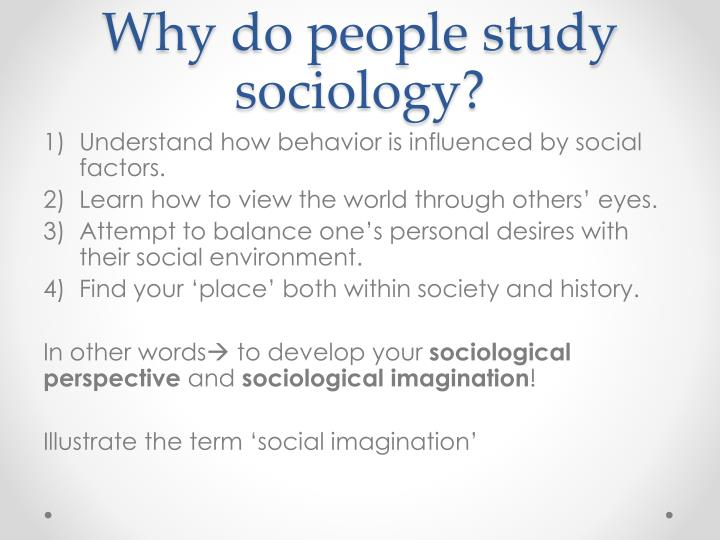 how important is the study of sociology essay Read about sociology essay writing, download free sociology essay sample and find out how to write a sociology essay at professays.