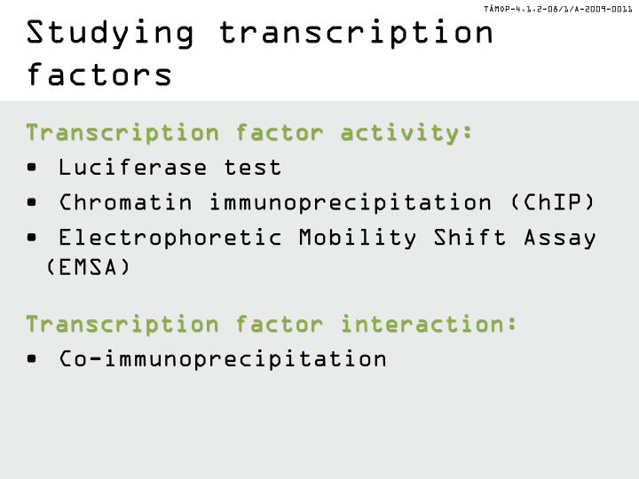 Studying transcription factors