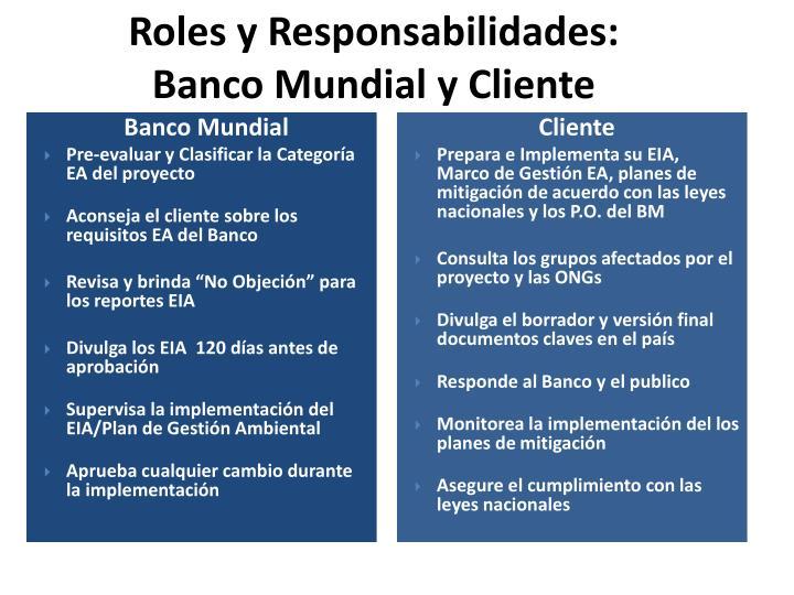 Roles y Responsabilidades: