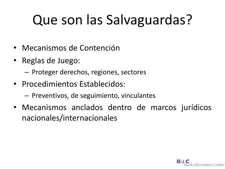 Que son las Salvaguardas?