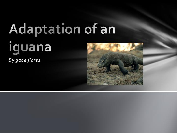 Adaptation of an iguana