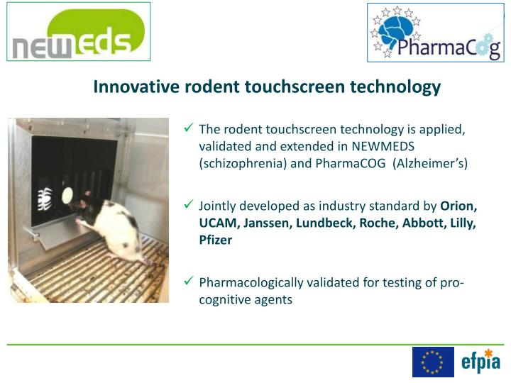Innovative rodent touchscreen technology