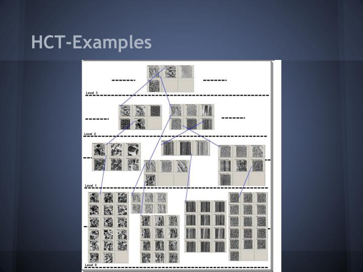 HCT-Examples